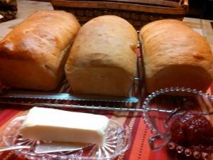 Baked Honey Whole Wheat Bread