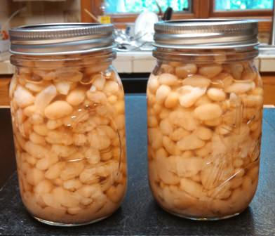 Canned Navy Beans